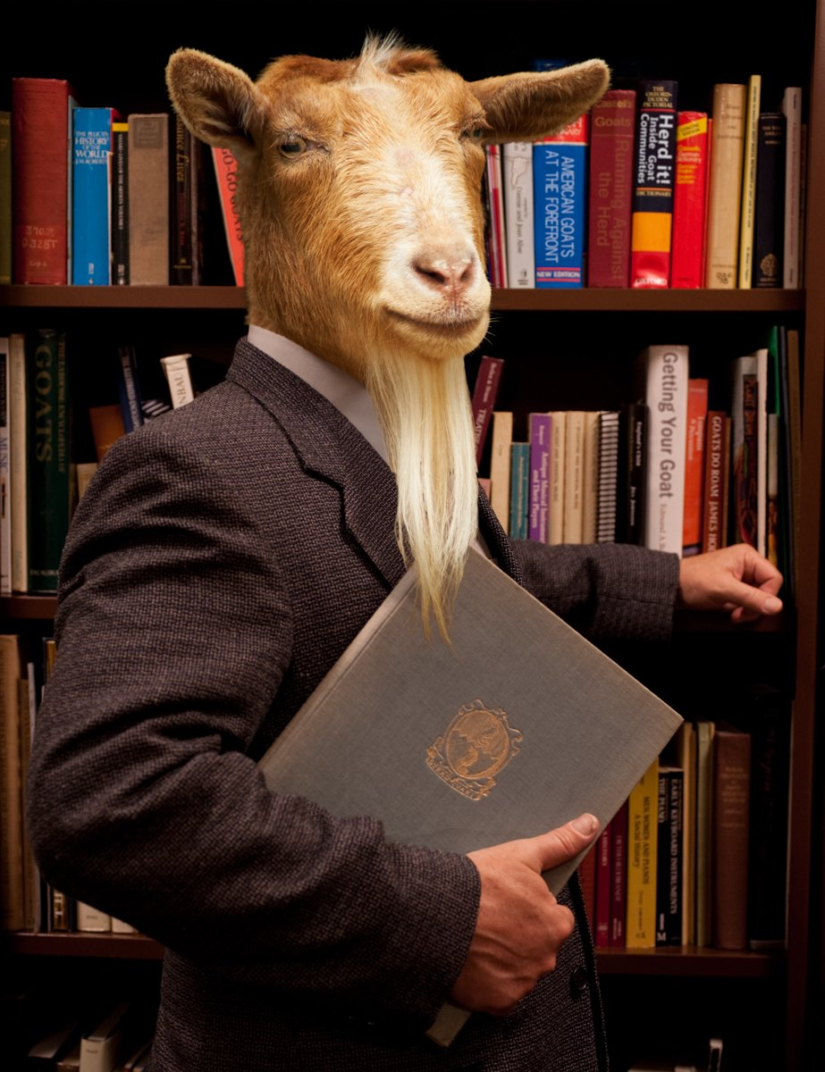 Professor of Goat Studies, American Animal University